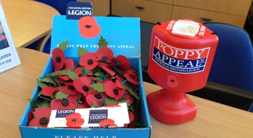 Poppy_Appeal_Harlow